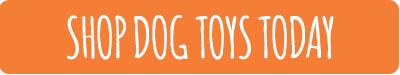 shop-dog-toys-today-cta-button